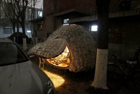 Chinese Micro Home Egg