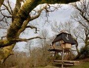 Tiny Hut on Stilts - Nozomi Nakabayashi - Dorset England - Exterior Front - Humble Homes