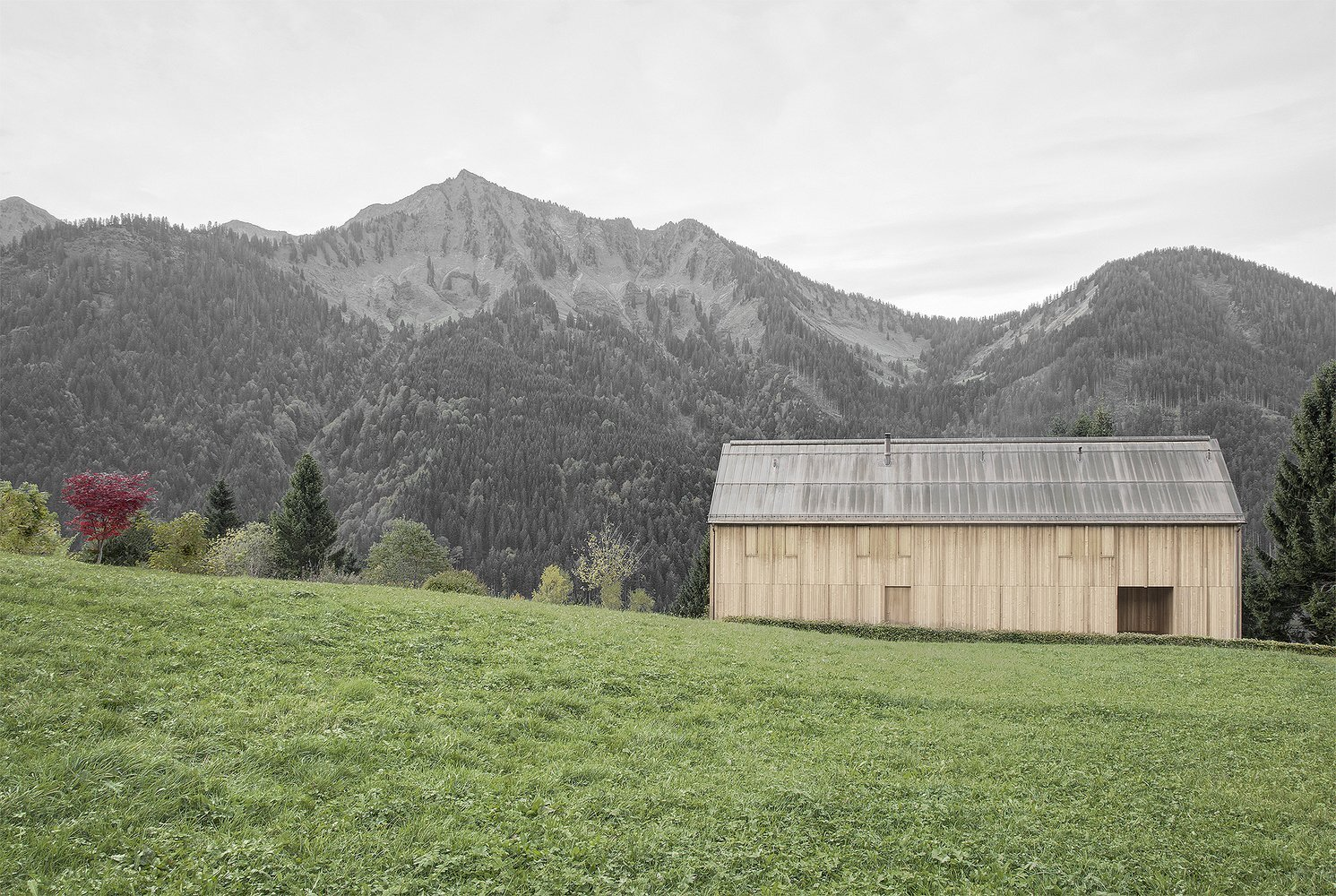Haus am Stürcherwald - Bernardo Bader Architekten - Austria - Exterior 2 - Humble Homes