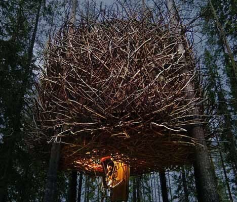 Tree Hotel - The Birds Nest Treehouse