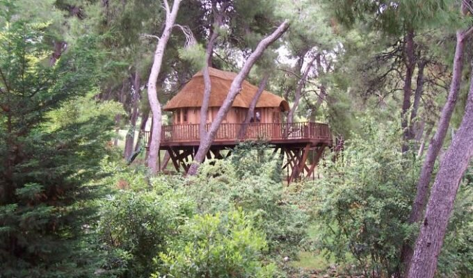 High Tech Hideaway - Blue Forest - Treehouse Retreat - Humble Homes
