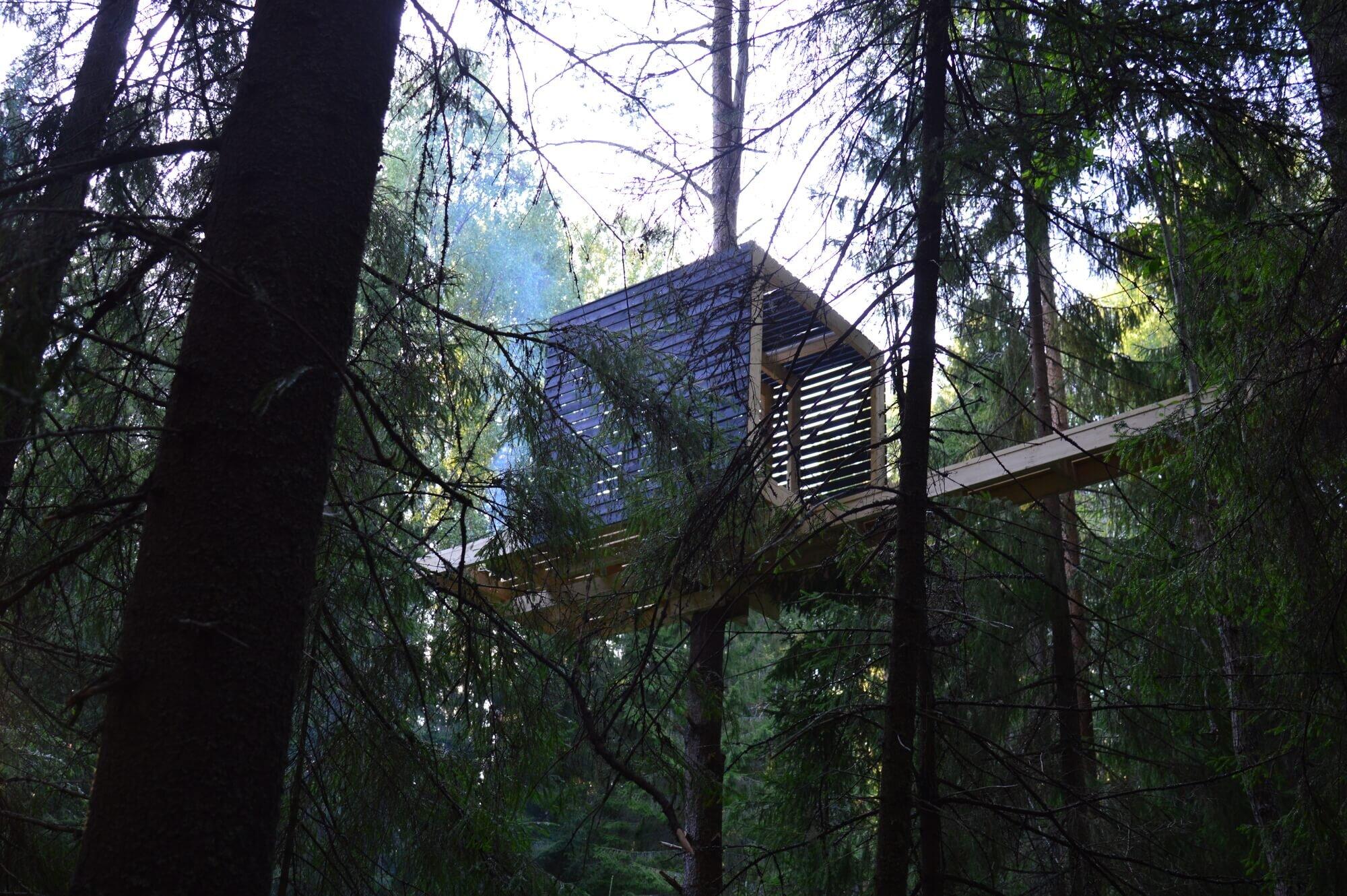 lesom-Sozonych-Russia-7