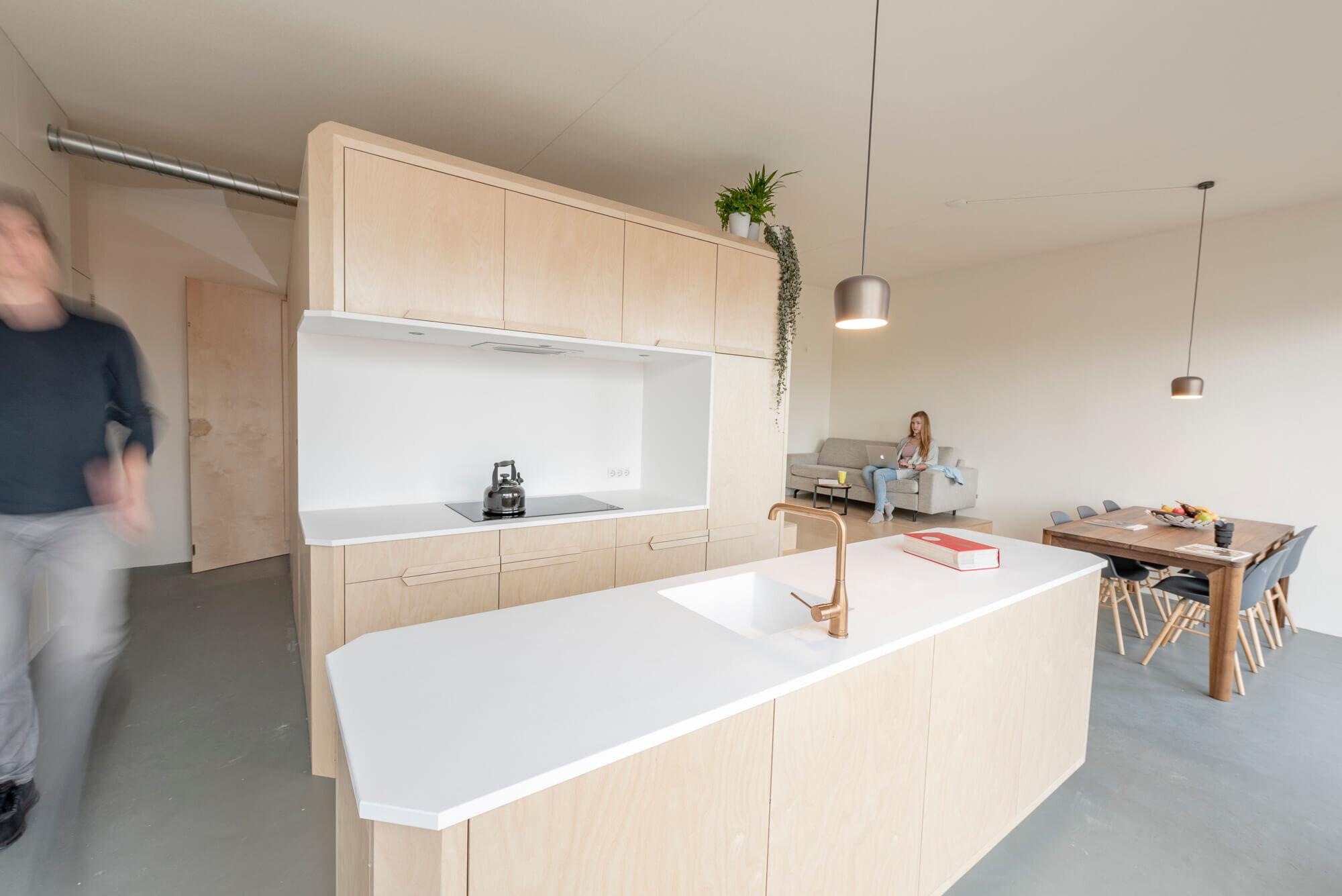 Loft-Buiksloterham-Heren-5-Architects-The-Netherlands-1